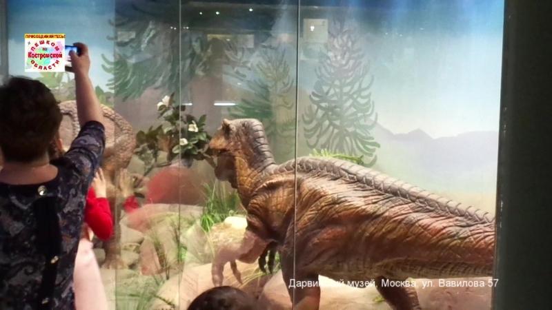 Ожившие диназавры. Дарвинский музей