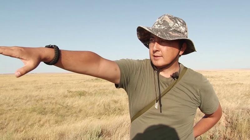 Геоглифы Тургайского плато (Казахстан) - маленькие путешествия по родному краю.