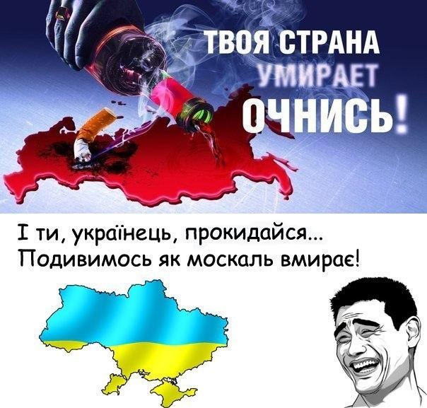 Национальный диалог улучшит ситуацию в Украине, - глава ОБСЕ - Цензор.НЕТ 1987