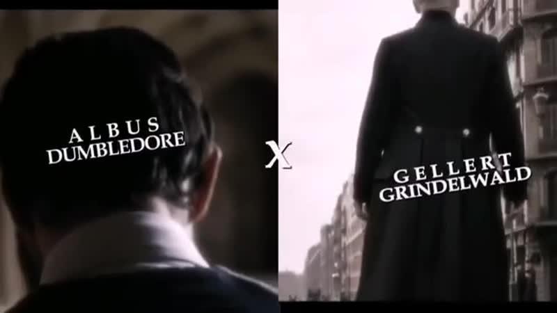 Fantastic beasts vine ▸albus dumbledore x gellert grindelwald ▸ grindeldore (gelbus)