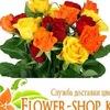 Flower-Shopkz Flower-Shopkz