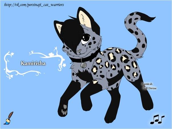 Коты воители картинки самые красивые - e1