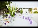 Оформление свадьбы в бело фиолетовом цвете в Крыму