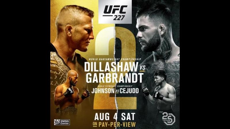 UFC227 Demetrious Johnson в игре Развали дивизион.
