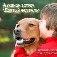 В Новосибирске проходит интернет-аукцион «Добрый февраль»