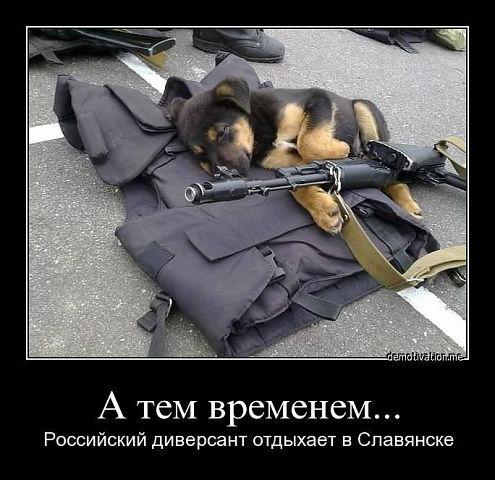 http://cs618620.vk.me/v618620885/59f7/yfw8RU4sO4I.jpg
