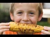 Малыш и вкусная кукуруза - смешно