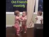 Долгожданная встреча друзей