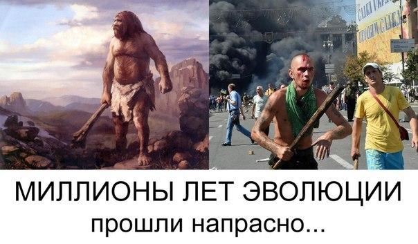 http://cs619625.vk.me/v619625343/14f1e/Oo-CfcL8Ja0.jpg
