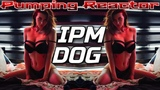 IPM - DOG (Original Mix)
