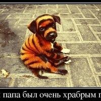 Артем Морев, 11 апреля , Губкин, id178735891