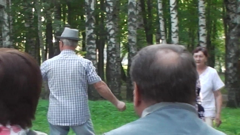 (18)-25-08-2018Г-Венёв-парк-концерт-муз гр.-ПАТЕФОН-Танцуют все ...желающие!