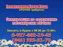 17 августа 07 20 12 50 Работа в Самаре Телевизионная Биржа Труда