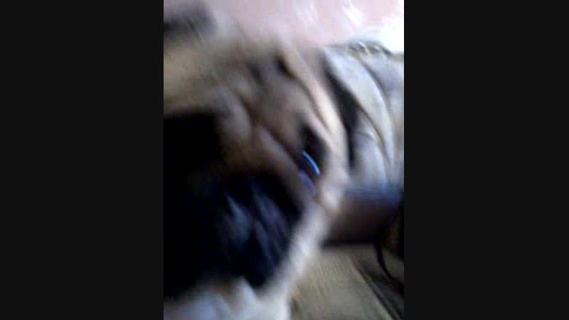 Video-2016-04-27-09-34-10.mp4