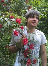 Анатолий Золотарев