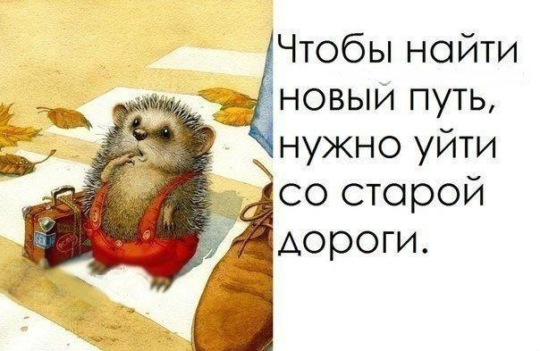 http://cs14101.vk.me/c7007/v7007201/708e8/YMrhqJqLA48.jpg