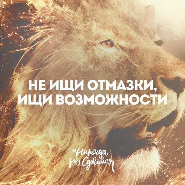 Фото №456241573 со страницы Ивана Хохлова