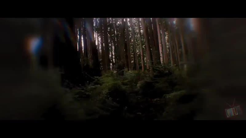 Сумерки ~ оборотни ~ клип ~ заказной ( Для Виктории) ~ Silver Spoon