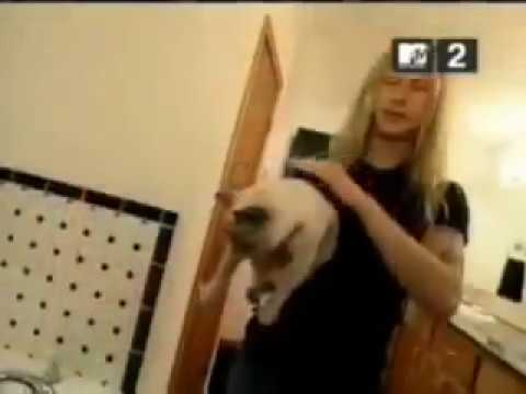 Jerry Cantrell adopted Layne Staley's cat Sadie after Layne passed away