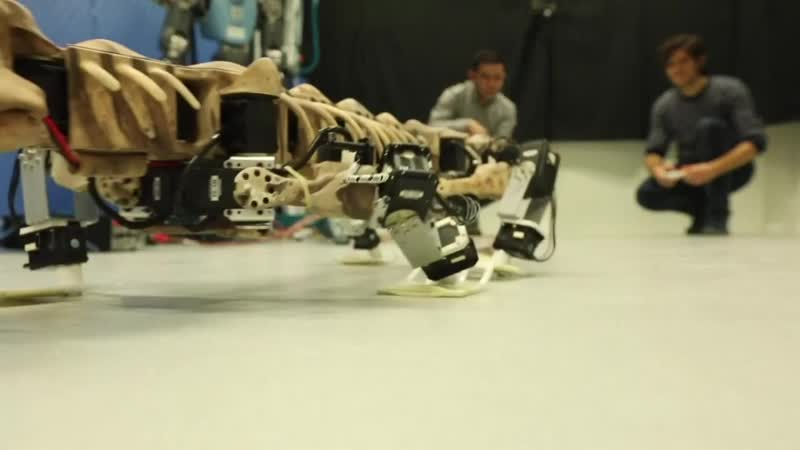 Robot replicates steps of 290-million-year-old creature