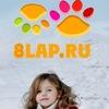 8lap.ru - Все домашние и дикие животные
