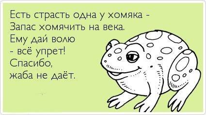 http://cs315228.vk.me/v315228143/60fa/gSQMR8SmYco.jpg