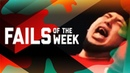 Owl Meets Drone: Fails of the Week (February 2019) | FailArmy