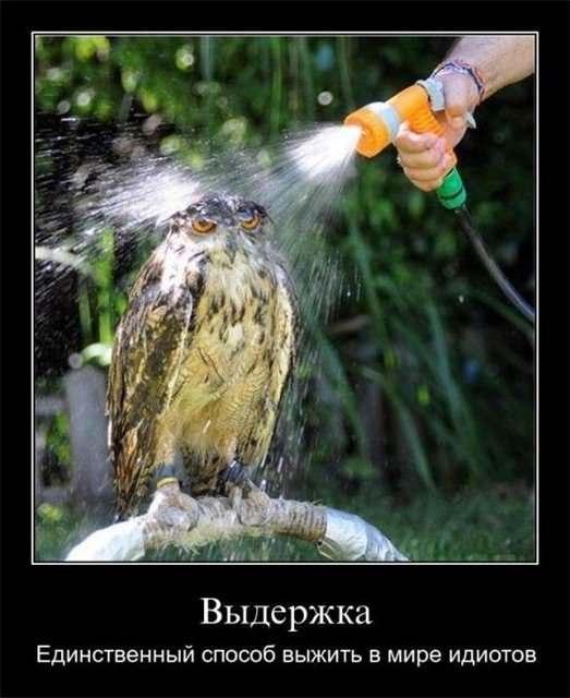 ТВОРЧЕСКАЯ ЛАБОРОТОРИЯ - Страница 28 Ei4vNSY2C8w