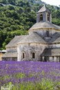 Лавандовый Прованс, Франция