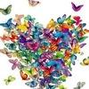"""Благотворительный фестиваль """"Бабочки"""""""
