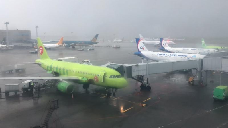21 04 аэропорт Домодедово
