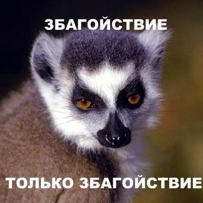 Данила Левшин, 14 апреля , Красноярск, id223034089