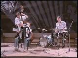 Владимир Данилин (аккордеон) видео ___Day Dream