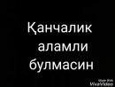 Feride_narkulova_?utm_source=ig_share_sheetigshid=1ivi3yibsa0rr.mp4