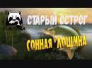 РУССКАЯ РЫБАЛКА 4 - СТАРЫЙ ОСТРОГ, СОННАЯ ЛОЩИНА!