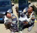 Встреча хозяина и его собаки, которая была украдена