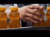 Du faux miel pour une vraie escroquerie !! le miel est le troisième produit le plus contrefait dans le monde