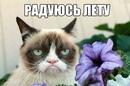 Дмитрий Летюк фотография #1