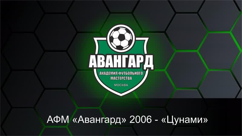 ДЛФЛ. Дивизион 06_07. АФМ Авангард-2006 - Цунами. (13.01.2019)