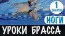 НАИБОЛЬШЕЕ ПРОДВИЖЕНИЕ В БРАССЕ. УДАР НОГАМИ БРАССОМ. УРОКИ БРАССА. УРОК 1 @Swimmate