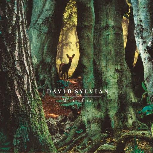 David Sylvian альбом Manafon