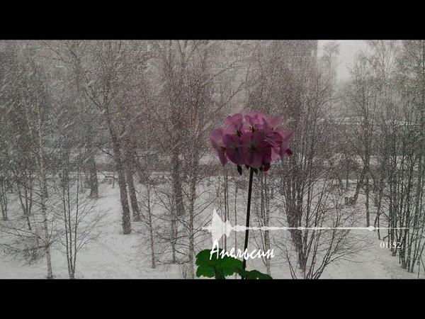 ЛЁХА (ЕЛЕНА САВЕЛЬЕВА) - А МОЖЕТ