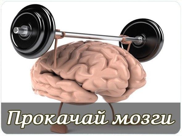 69 простых советов для улучшения работы мозга HdbhdIeDVBU