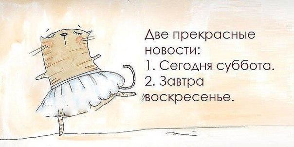 https://pp.vk.me/c543100/v543100148/ba6e/ylV7o-7S0Bw.jpg