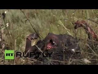 сгоревшие танкисты Украинских  войск 18 +