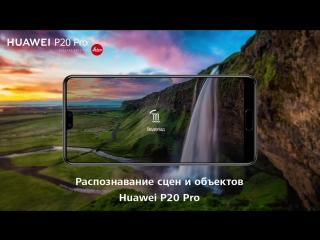 Huawei P20 Pro. Распознавание сцен с помощью искусственного интеллекта