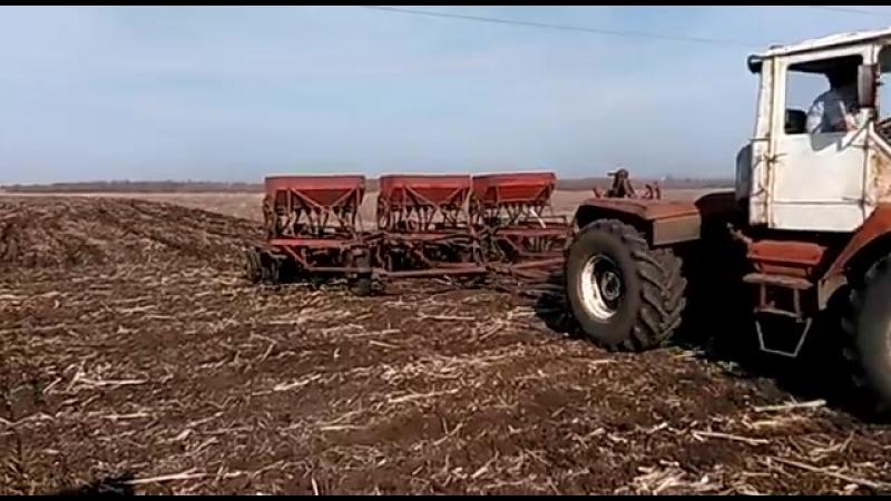 трактор Т-150(ХТЗ) и сеялки СЗС-2.1.Посевная