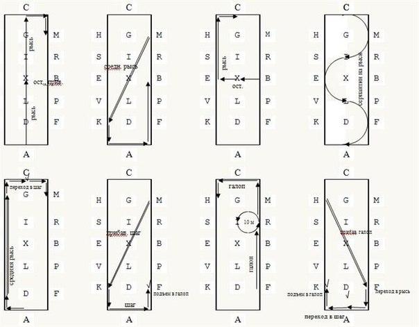 Выездка-схема езды №1 (В-1)