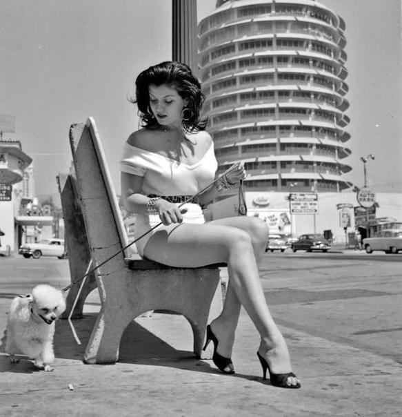 Джоан Брэдшоу (актриса и кинопродюссер) выгуливает собачку.