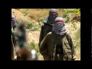 PKK YPG warranty of Syrian Kurds